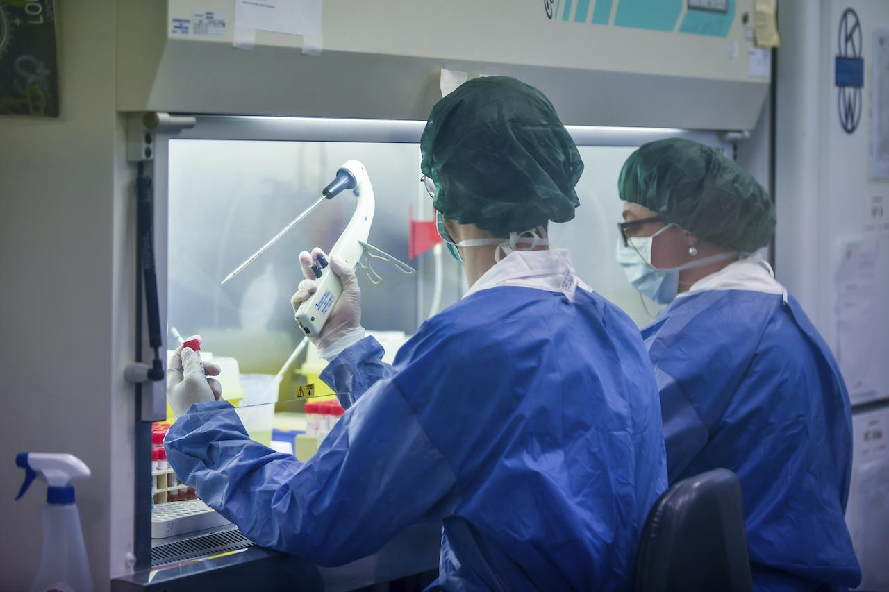 testovanie, laboratórium, koronavírus
