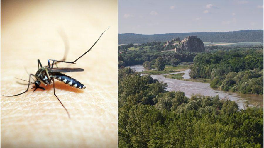 Komáre, Devín, Bratislava