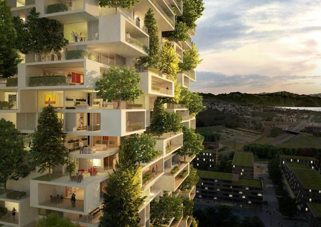 zelena stavba