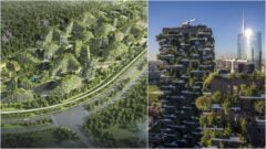 Vertical Forest Towers zelene stavby architektura stromy
