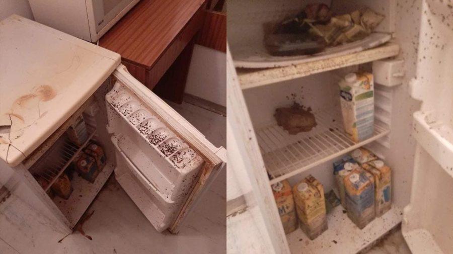 Chladnička, ktorú študentka našla po príchode