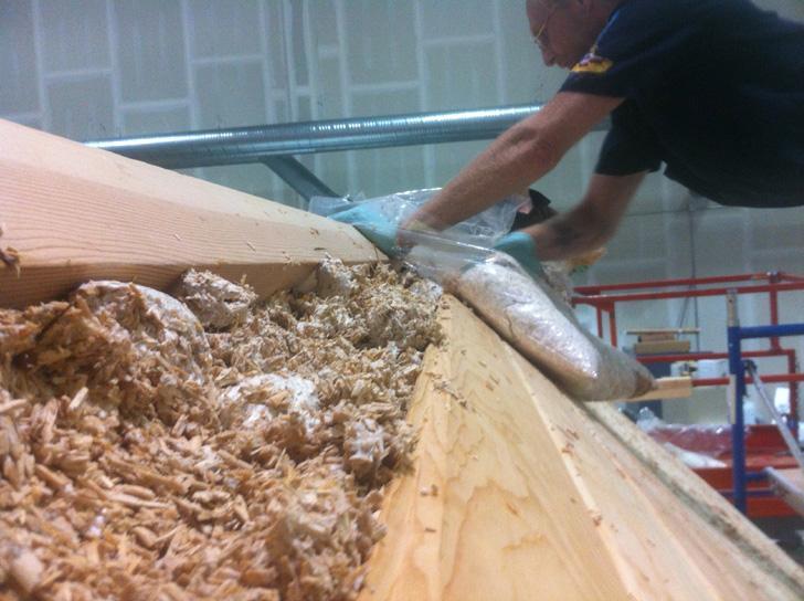 dom z hub nizkoenergeticka stavba prirodna izolacia mycelium ekologicke obnovitelne materialy