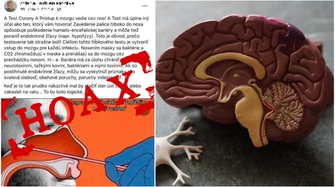 Hoax mozog
