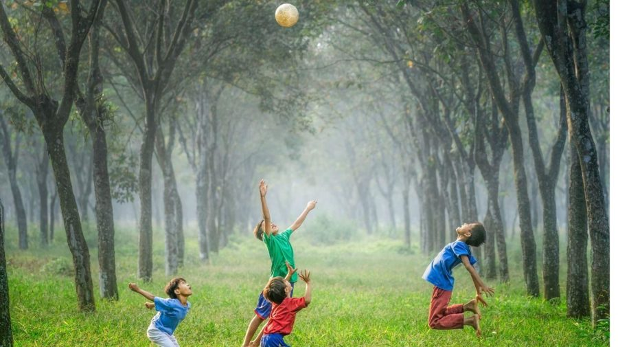 Deti v lese