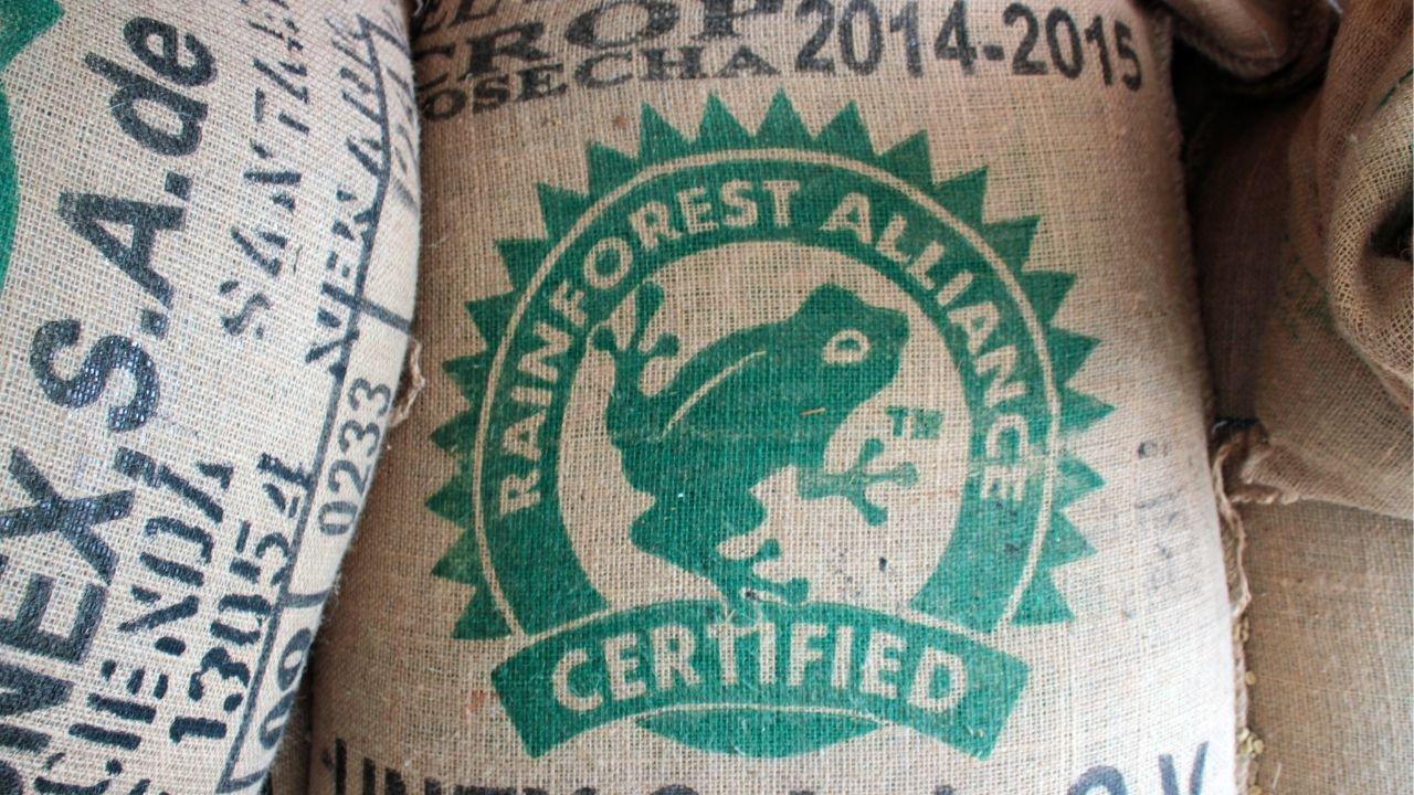 Rainforest alliance certifikácia