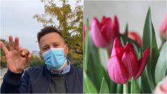 Vallo tulipány Holandsko 10 000