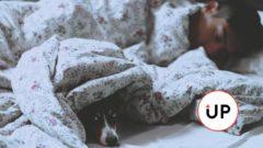 5 psychologických avedecky overených trikov, ktoré ti pomôžu zaspať do niekoľkých minút