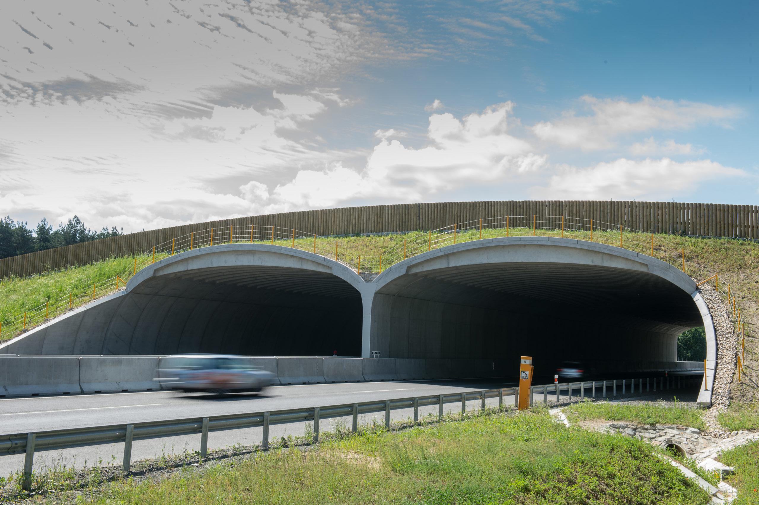 zelený most