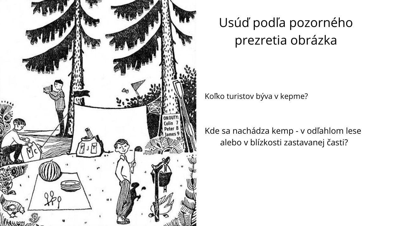 vizálna hádanka les kemp