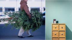 ikea, nábytok, vianočný stromček