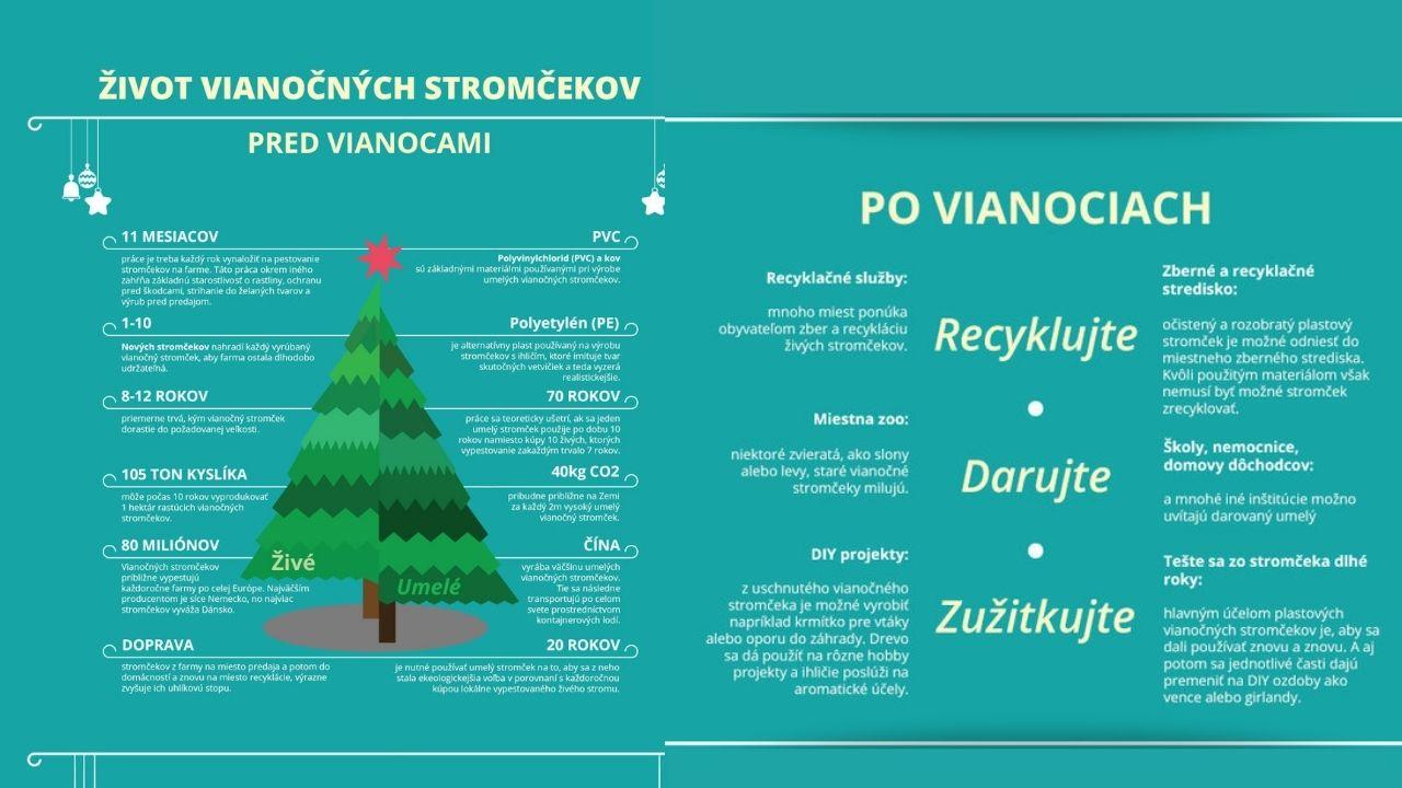 infografika vianočné stromy