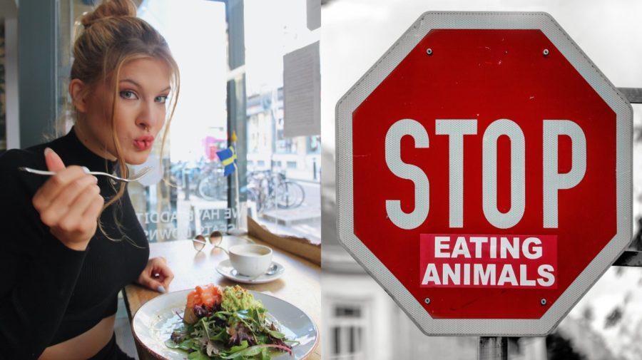 vegan, jedlo, veganka vegetarian, stop, dievča, žena