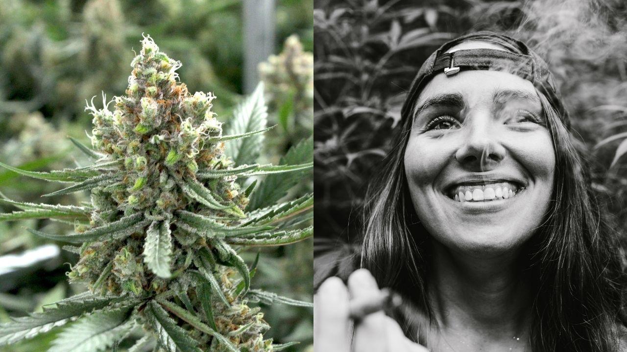 marihuana, fajčenie, dievča, úsmev