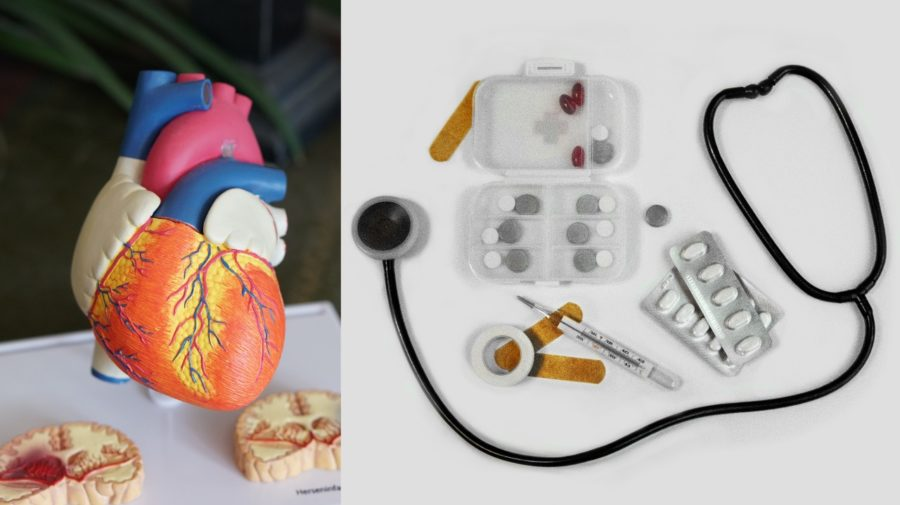srdce medicína