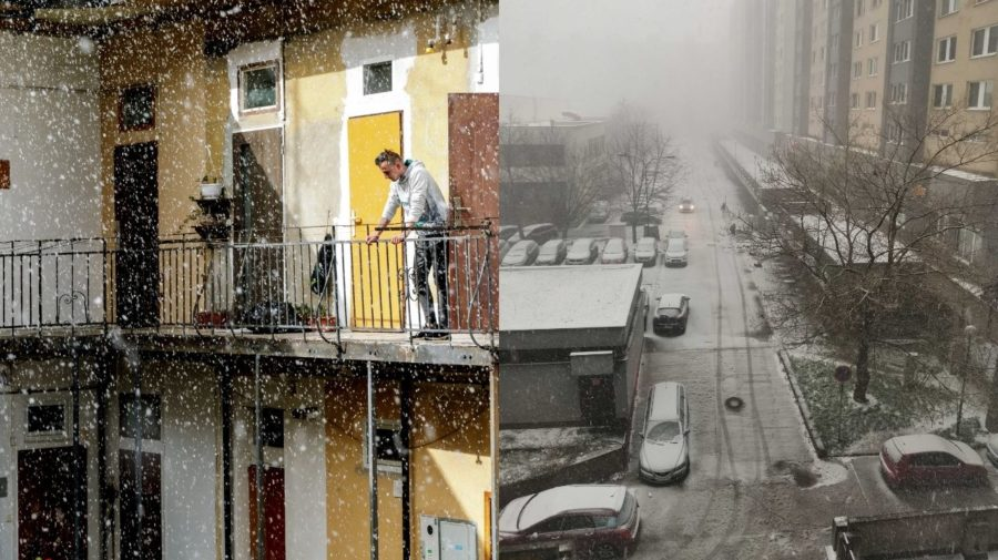 Sneh, Bratislava