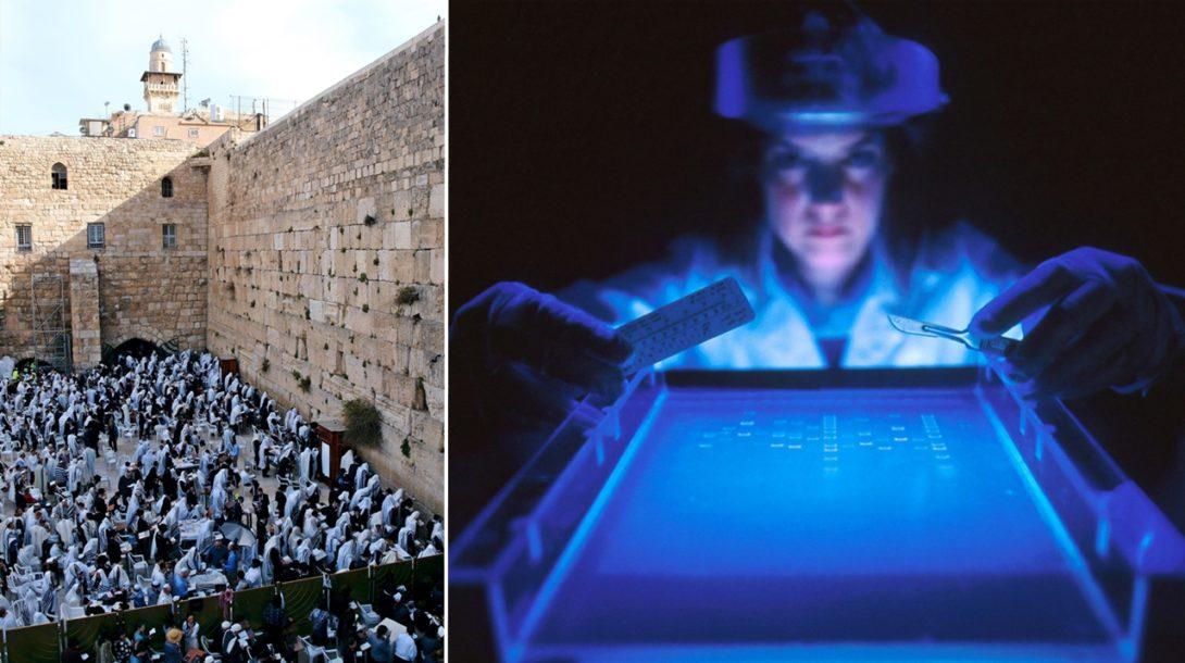izraelskí vedci rakovina