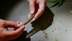 marihuana, joint
