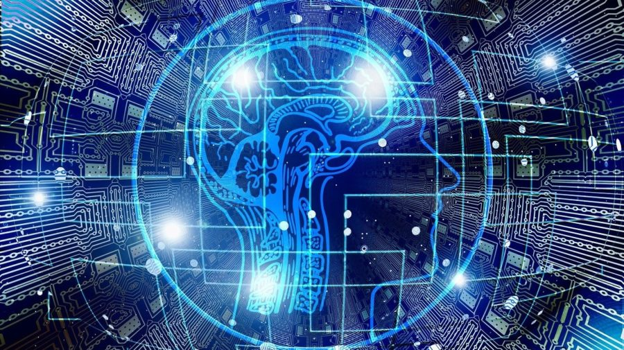 mozog inteligencia