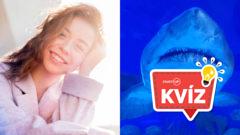 Žralok, žena