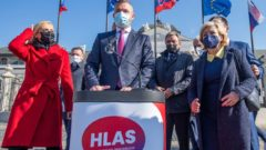 HLAS-SD