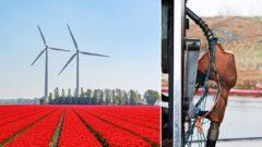Holandsko spaľovacie autá benzíny