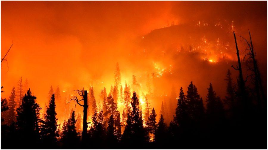 Požiare v Kali