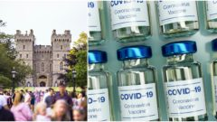 Variant, koronavírus