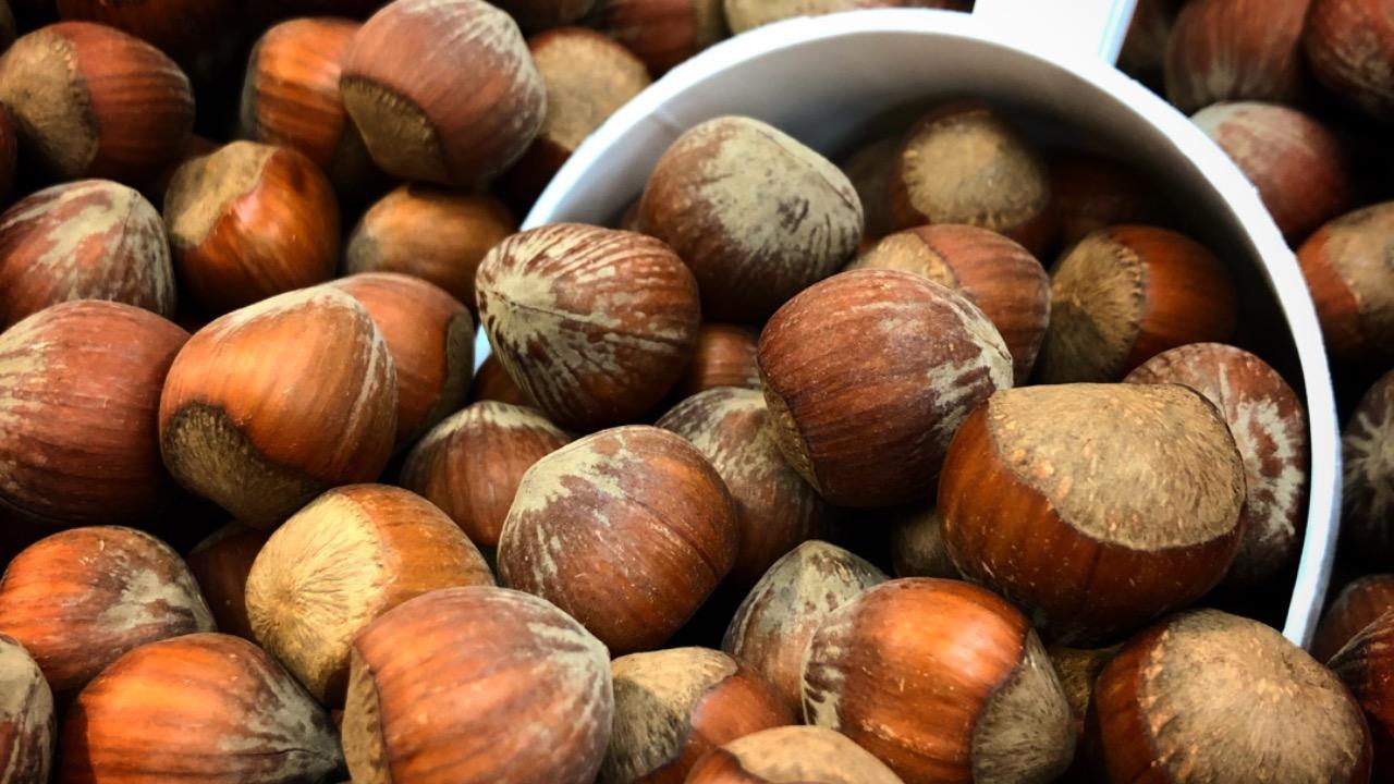 Nutella Taliansko pestovatelia farmy