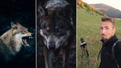 František Kekely Travelers.sk vlk vlci
