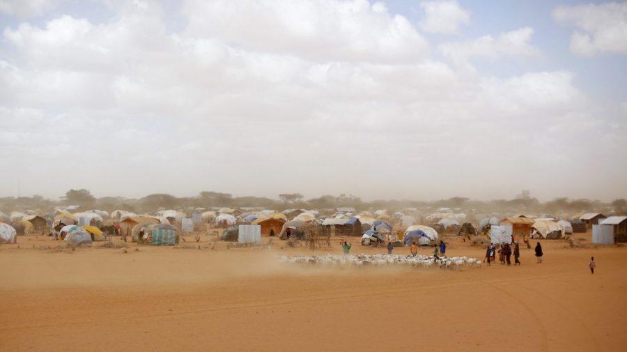 migrácia klimatická zmena