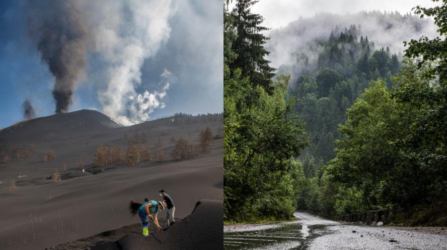 sopka, dážď, les
